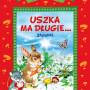 db_Uszka_ma_dlugie