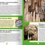 db_edu_dlaczego_przyroda_rozkladowka2